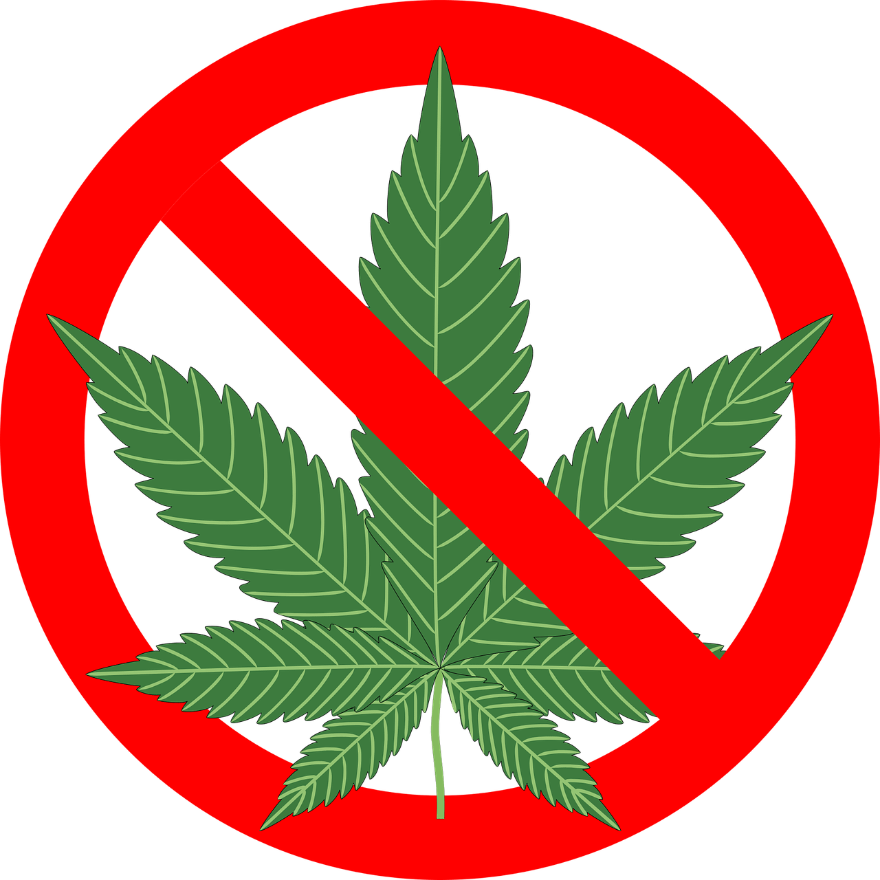 """no pot"" street sign"